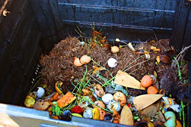 Compost-7